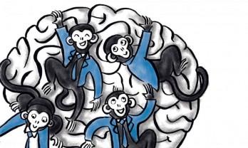 Ohne Achtsamkeitspraxis & Achtsamkeitsmeditation: Rauf, runter, rüber, her und wieder zurück – unser Affenverstand – Leseprobe